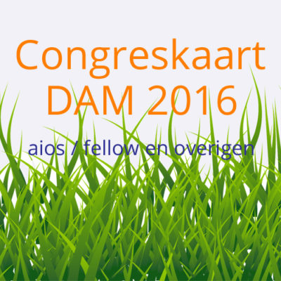 DAM-congres-2016-fellow